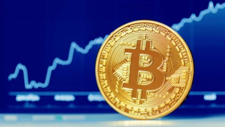 Bitcoin Whales Accumulation Patterns Shows Strong Bullish Sentiment Among Top Holders